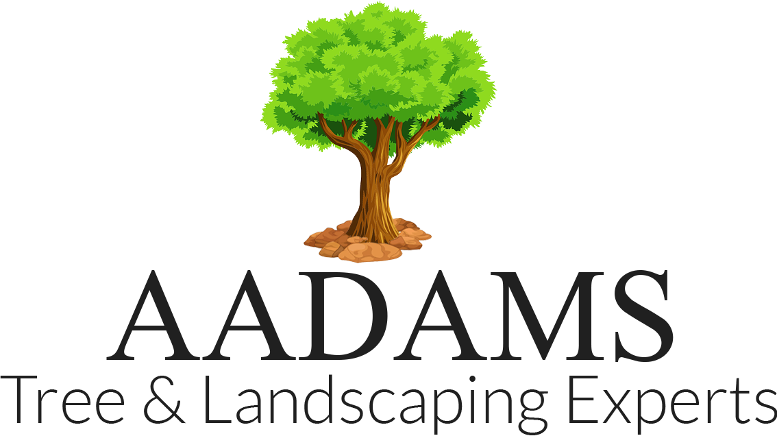 Adams Tree & Landscaping Experts